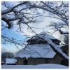 365-042 │ 好想念北海道